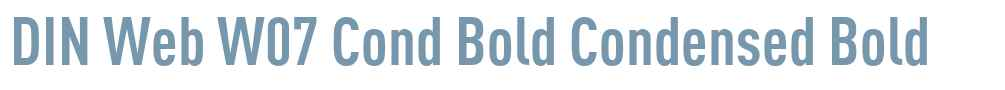 DIN Web W07 Cond Bold