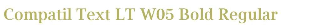 Compatil Text LT W05 Bold