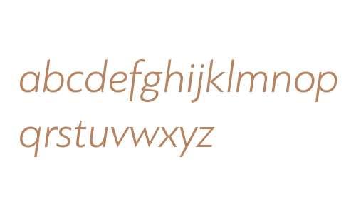 PF Bague Sans W01 Light Italic