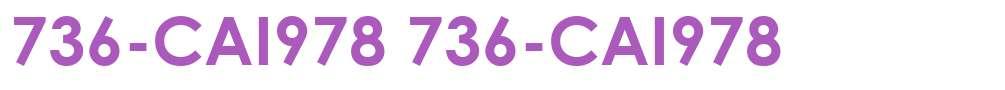 736-CAI978