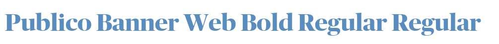 Publico Banner Web Bold Regular