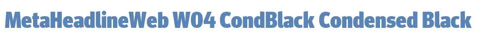MetaHeadlineWeb W04 CondBlack
