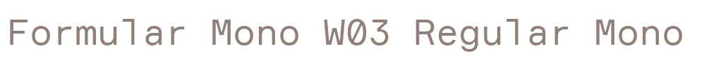 Formular Mono W03 Regular