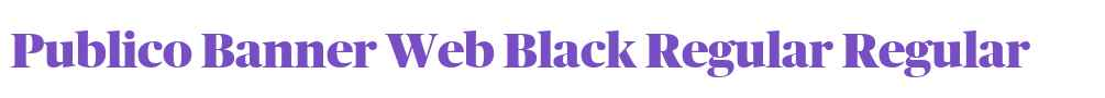 Publico Banner Web Black Regular