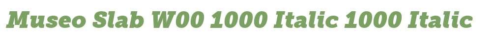 Museo Slab W00 1000 Italic