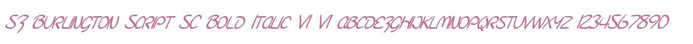 SF Burlington Script SC Bold Italic V1 V1
