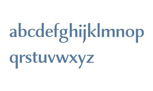 Combi Sans W01 Medium