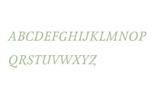 Latienne W01 Italic SC