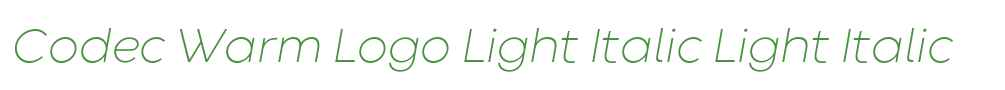Codec Warm Logo Light Italic