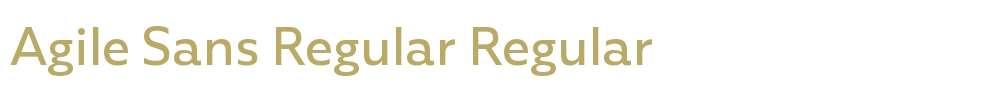 Agile Sans Regular