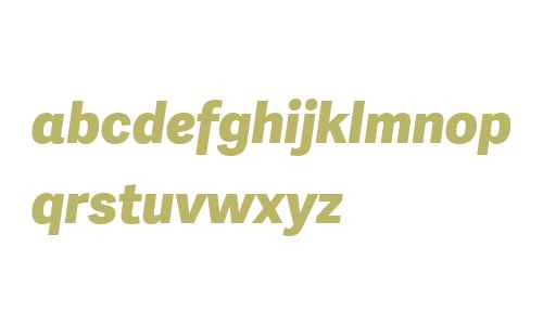 Adelle Sans W04 ExtraBold It
