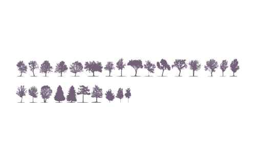 trees TFB