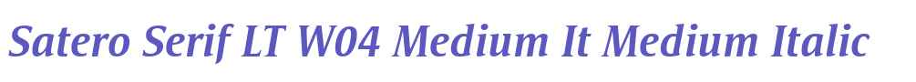 Satero Serif LT W04 Medium It