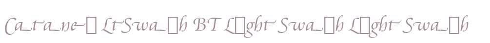 Cataneo LtSwash BT Light Swash