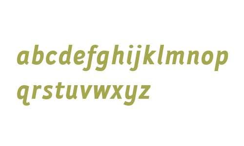 Folder Bold Italic