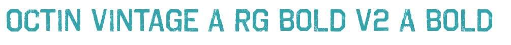 Octin Vintage A Rg Bold V2