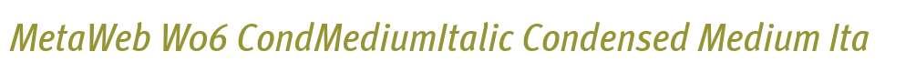 MetaWeb W06 CondMediumItalic