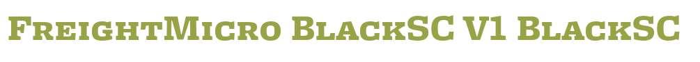 FreightMicro BlackSC V1