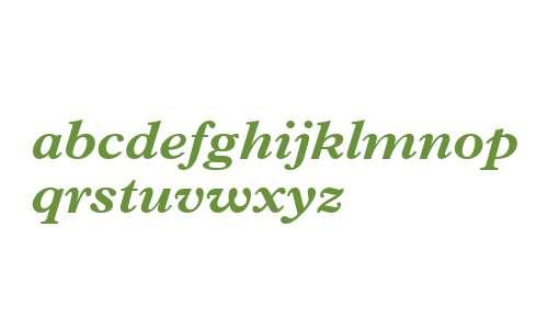 Terminus Black SSi Bold Italic