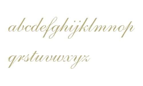 Shelley LT Allegro Script