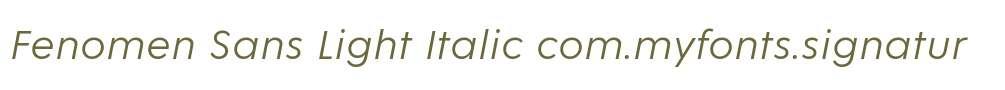 Fenomen Sans Light Italic