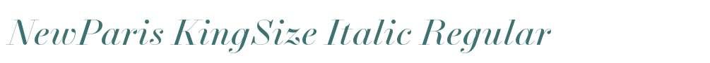 NewParis KingSize Italic