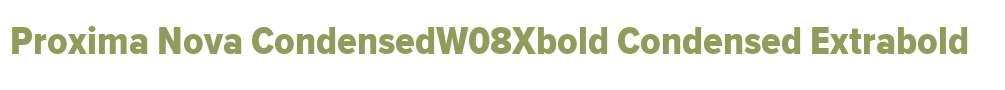Proxima Nova CondensedW08Xbold