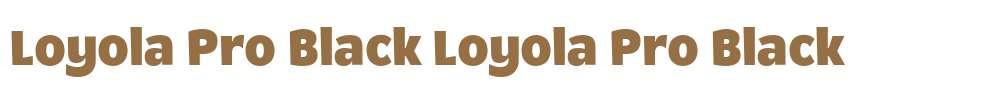 Loyola Pro Black