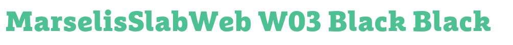 MarselisSlabWeb W03 Black