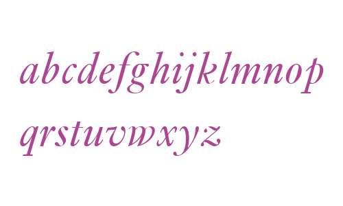 Ehrhardt MT W04 Italic
