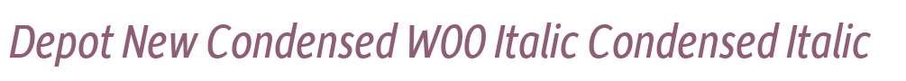 Depot New Condensed W00 Italic