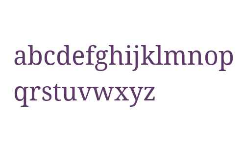 Droid Serif W07 Regular