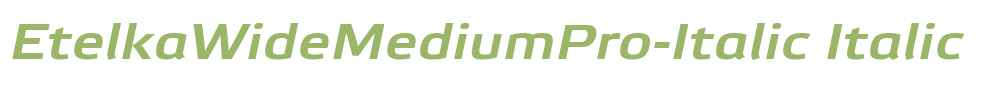 EtelkaWideMediumPro-Italic