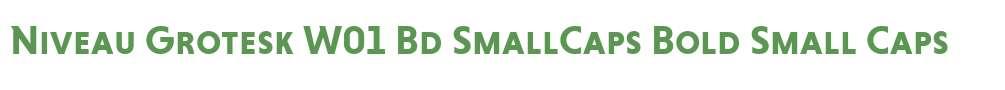 Niveau Grotesk W01 Bd SmallCaps