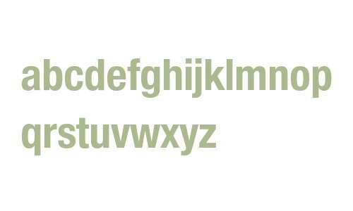 Neue Helvetica Condensed BQ Fonts Downloads - OnlineWebFonts COM