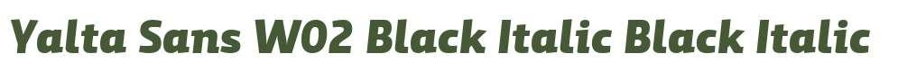Yalta Sans W02 Black Italic