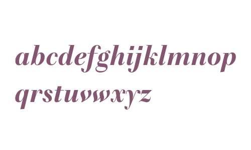 Telemaque FY W03 Black Italic