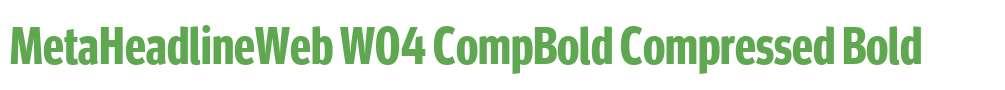 MetaHeadlineWeb W04 CompBold