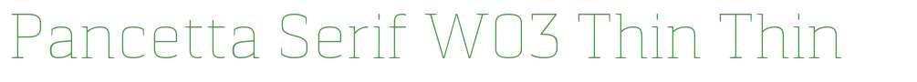 Pancetta Serif W03 Thin