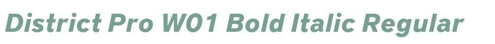 District Pro W01 Bold Italic