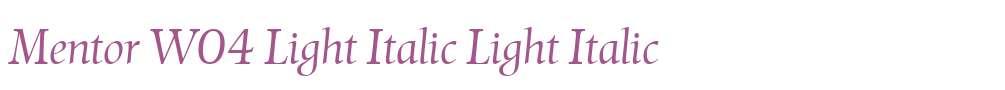Mentor W04 Light Italic