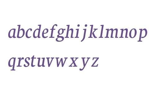 Neuton Italic V1