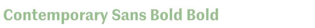 Contemporary Sans Bold