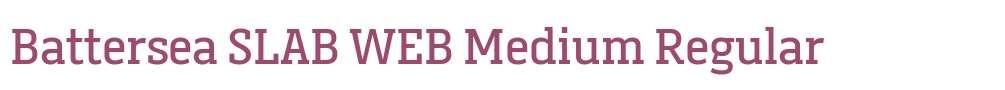 Battersea SLAB WEB Medium