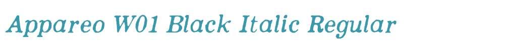 Appareo W01 Black Italic