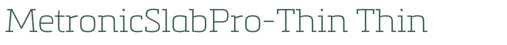 MetronicSlabPro-Thin
