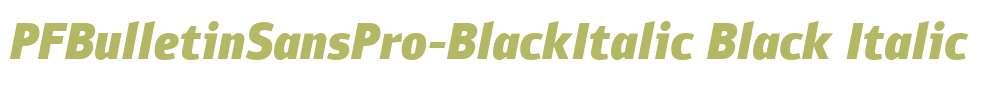 PFBulletinSansPro-BlackItalic