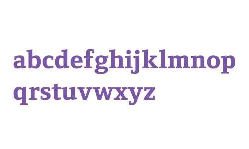 Fndry Form Serif W04 X Bd