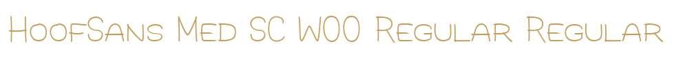 HoofSans Med SC W00 Regular