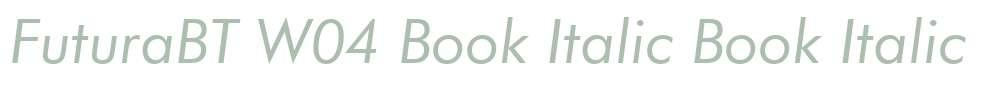 FuturaBT W04 Book Italic